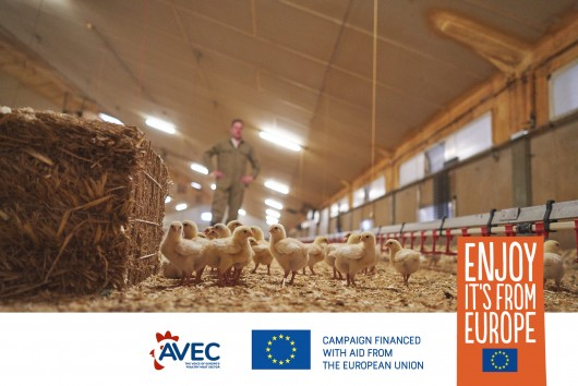European meat sector: What role for poultry meat in the F2F strategy?