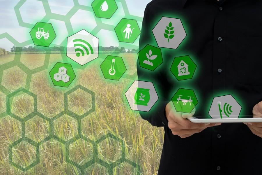 Innovation in der Landwirtschaft - Wie soll die Landwirtschaft in Zukunft aussehen?