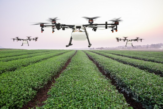 Science in the future of agriculture: Can innovation double food production - and improve sustainability?