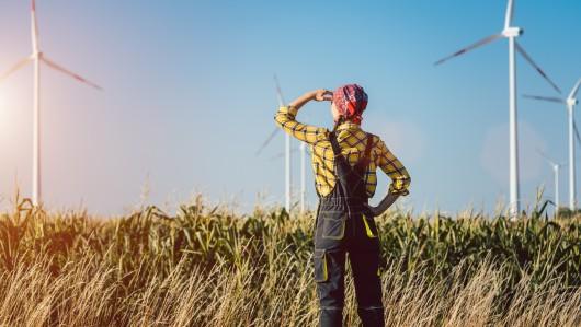 30 Jahre deutsche Einheit: Wie steht es um die ostdeutsche Landwirtschaft?