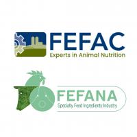 Fefac and Fefana