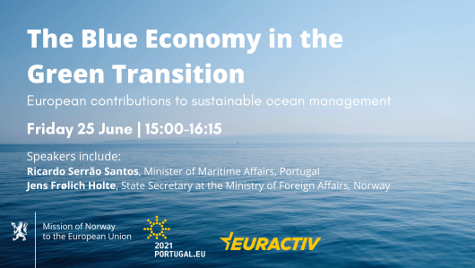 Media Partnership: The Blue Economy in the Green Transition – European contributions to sustainable ocean management