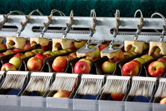 Sustainable Food Systems: Does the EU 'Farm to Fork' strategy have all the answers?