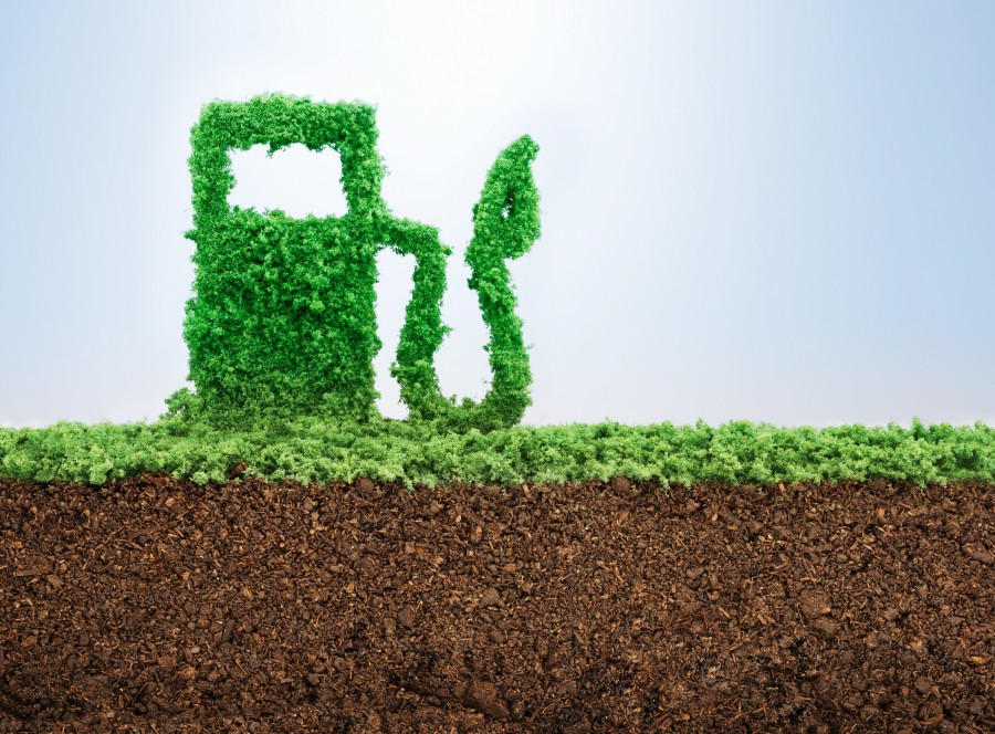 Biofuels and sustainability: Decarbonising transport and fuelling food security