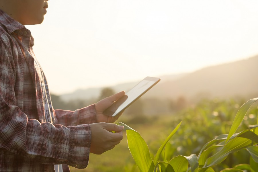 Precision farming: The silver bullet for the future  of European farming?