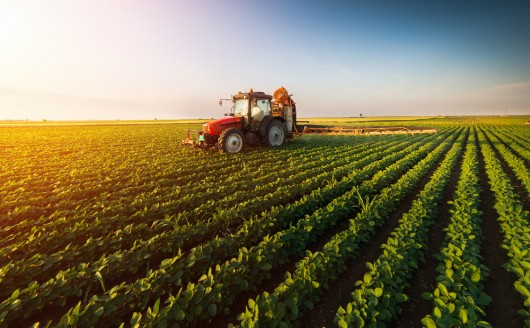 Landwirtschaftliche Entwicklung im Europäischen Aufbauplan in Deutschland