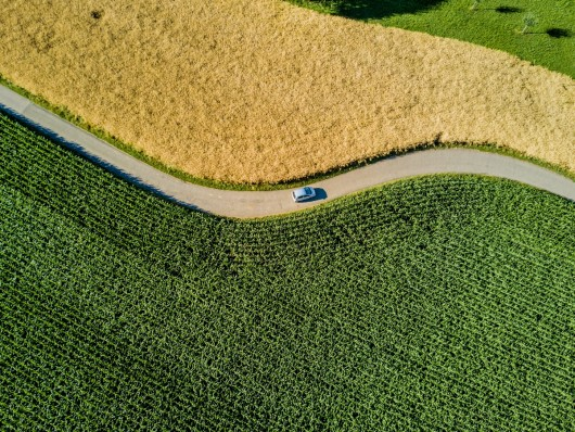 Fit for purpose?  The role of renewable fuels on the road to 2030 and beyond