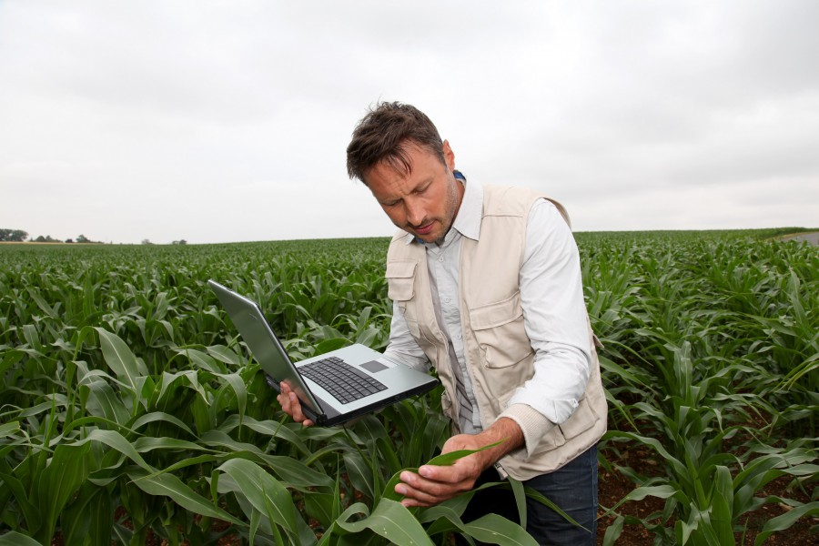 CAP and the Digital Single Market: What growth for agriculture in the digital age?